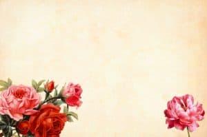 פרחים על דף